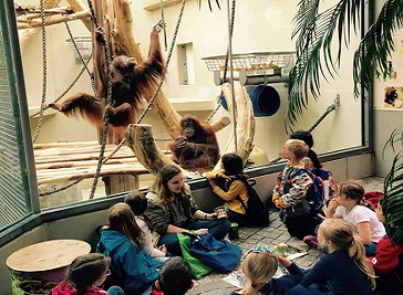 Zoo School Heidelberg