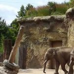 Zoos & Wildparks3